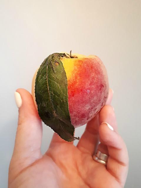 222 peachy.jpg