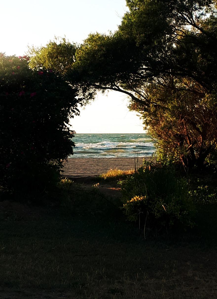 169 beach portal.jpg