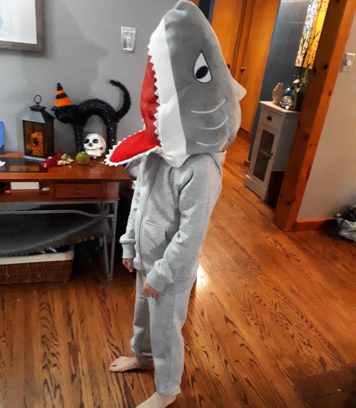 303 3rd grade shark.jpg