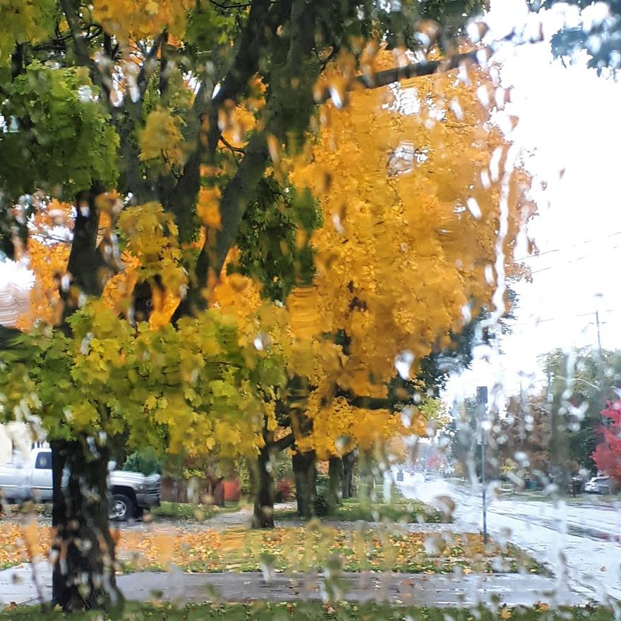 305 november rain.jpg