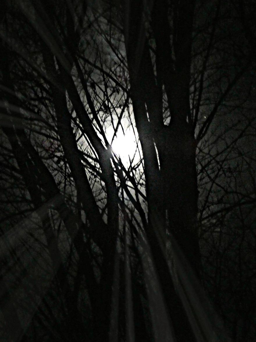 327 beaver moon.jpg