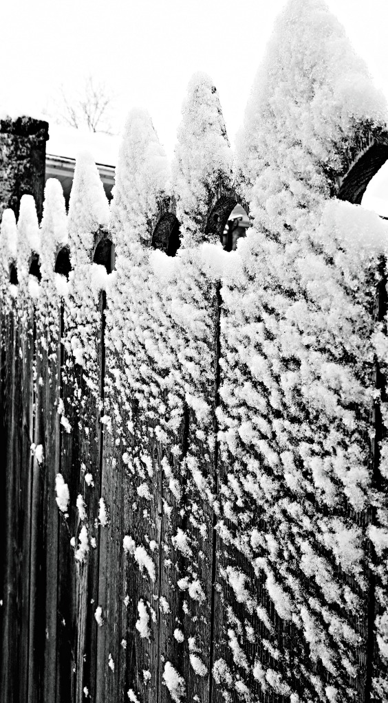 28 snow day