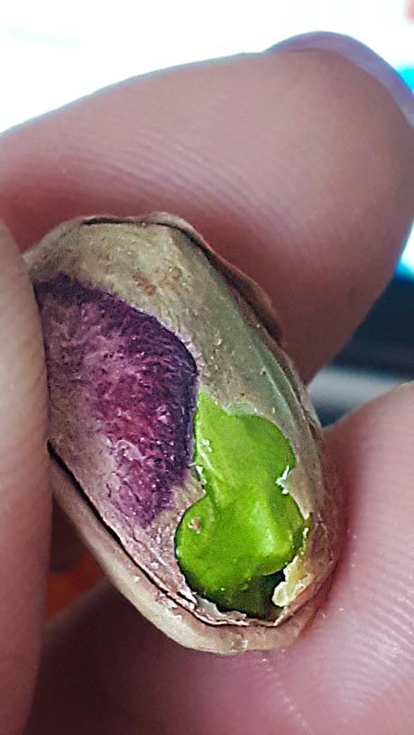 63 pistacio colours.jpg