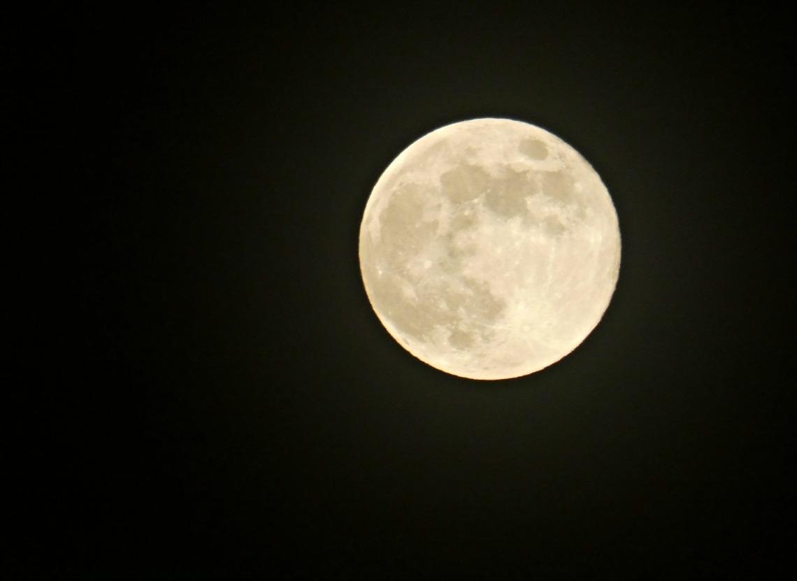 138 flower moon