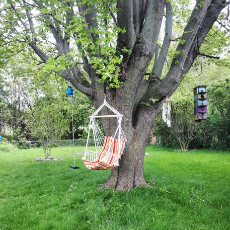 157 cozy tree.jpg