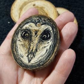304 sketchy owl.jpg