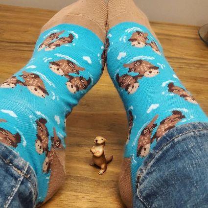 320 socks
