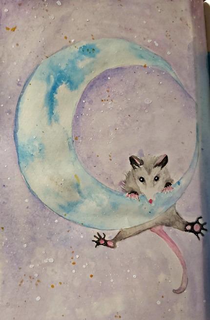 353 moon possum'.jpg
