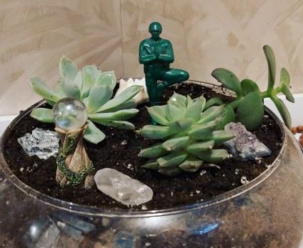 7 zen succulents